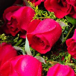 19支红玫瑰/永久的爱心芳园花坊