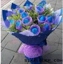 19支蓝玫瑰/承诺大兴幸福花屋