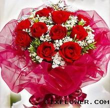 花花世界15枝红玫瑰/原谅我的突然
