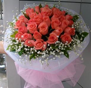 上海青浦绿图花卉园艺场33枝粉玫瑰/如此迷人