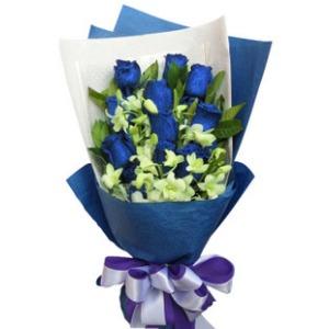 美丽的传说_11枝蓝玫瑰嫣然花卉