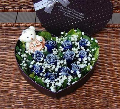 11支蓝色玫瑰/心的呼唤