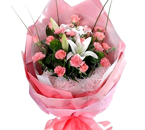 南京花里甜19支康乃馨/献给母亲的爱