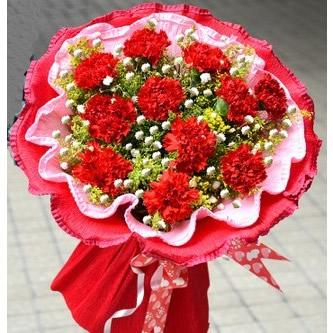 11枝康乃馨/感谢有您上海青浦绿图花卉园艺场