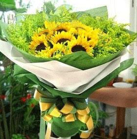 9枝向日葵/炙热的爱山涧花坊