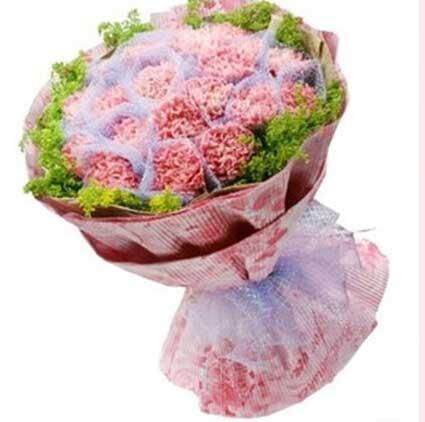 不朽的母爱/19支粉色康乃馨温州168鲜花