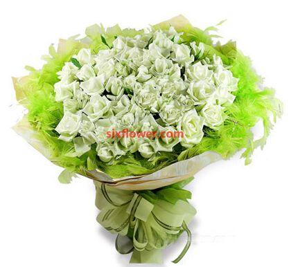 一捧洁白的爱/50支白色玫瑰南京雅馨花屋