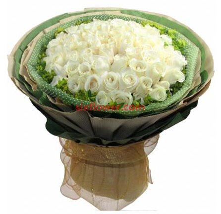 深圳花季节永远不分割/66支白玫瑰