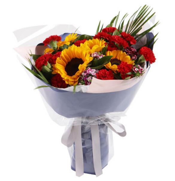 向日葵5枝,红色康乃馨16枝,石竹梅5枝;