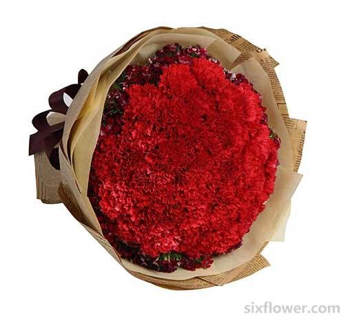 果然有花我的祝福永恒地留在您心中/红色康乃馨33支