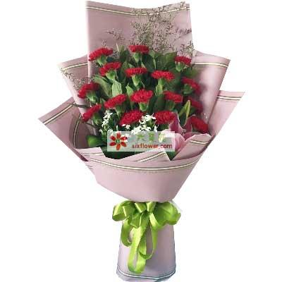 大兴幸福花屋我永远爱您/16支红色康乃馨