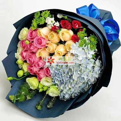 南京雅馨花屋爱你是我最大的选取权/19支玫瑰