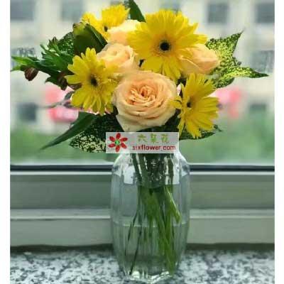 新鲜花艺您辛苦了/6枝向日葵,6枝香槟玫瑰