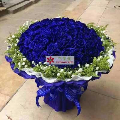 我爱你火焰永不息/99支蓝色玫瑰琦琦花卉