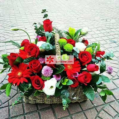 永恒的亲情/29支红色玫瑰,4支扶郎,4支桔梗慈溪一梅花艺