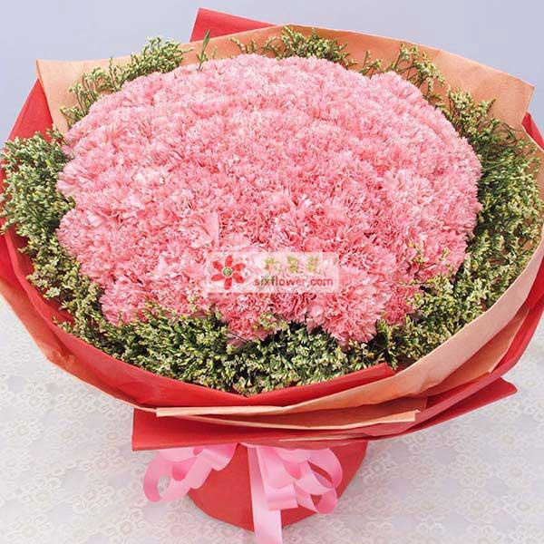 武清花无缺深切的祝福/99支粉色康乃馨