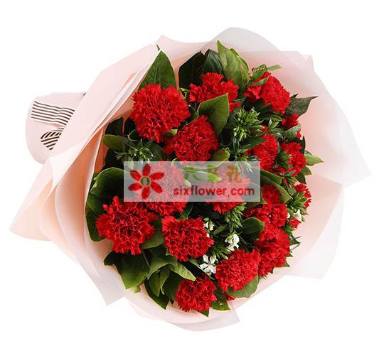 16支康乃馨/伟大的爱玫瑰花园(鼓浪路店)