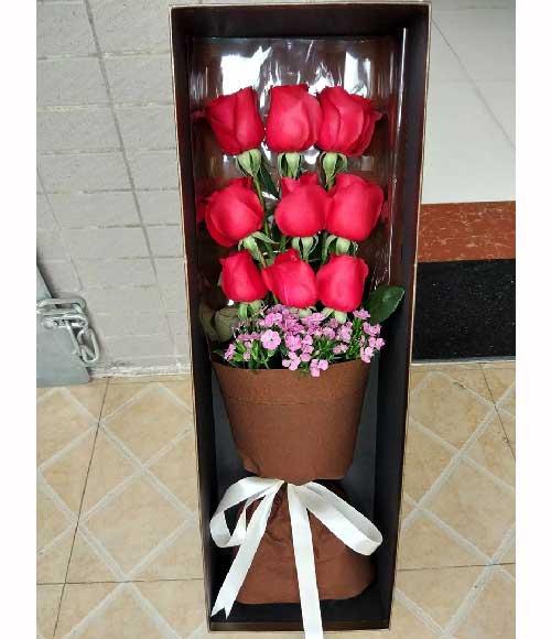 青岛胶州卉蕾鲜花店9支玫瑰礼盒,梦里有你