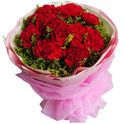 上海青浦绿图花卉园艺场用心的祝福/红色康乃馨11枝