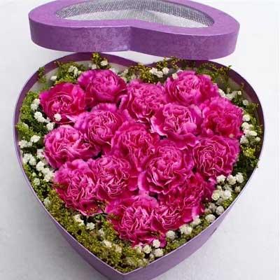 我的祝福常在您身边/16支紫色康乃馨深圳花季节