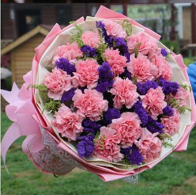 玫瑰花园(鼓浪路店)愿你这一年称心如意/19支粉色康乃馨