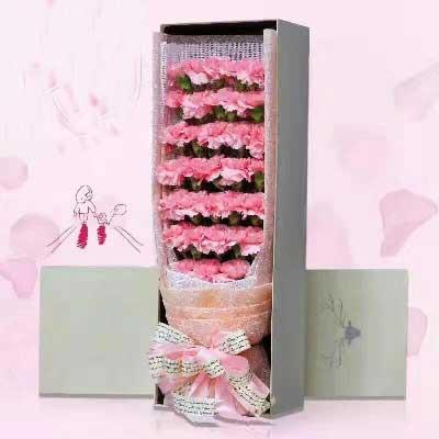 22枝粉色康乃馨/把无数的思念化做心中无限的祝福上海妮成鲜花店