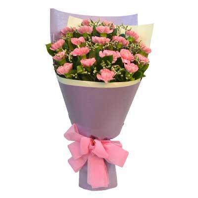 粉色康乃馨20支/敬祝你健康如意,福乐绵绵沁语花艺