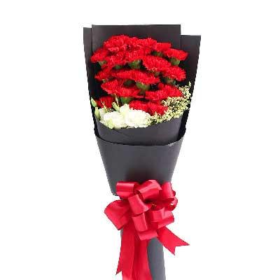 青岛胶州卉蕾鲜花店红色康乃馨19支/祝愿您永远安康