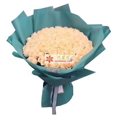 鄞州区友好鲜花你是我唯一的宝贝/99枝香槟玫瑰