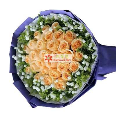 黄江镇宝宝花店一天比一天更爱你/29支香槟玫瑰