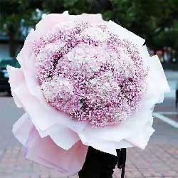 爱的思念/9只粉色绣球花满天星