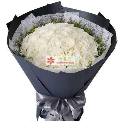 想念你的人/33支白色玫瑰黄江镇宝宝花店