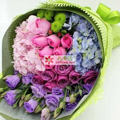 让流星带去我的爱/16支玫瑰宝坻花为媒花店