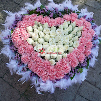 成都千色花艺欢欢喜喜/50支粉色康乃馨玫瑰