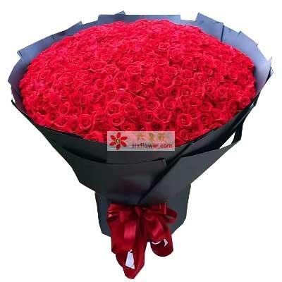 十里桃花花坊美好时光/365支红色玫瑰