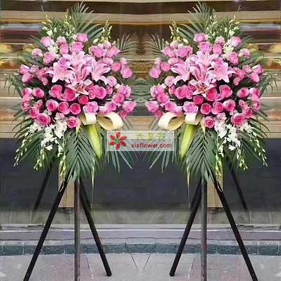 兰亭花絮源远流长有道财/48支粉色玫瑰