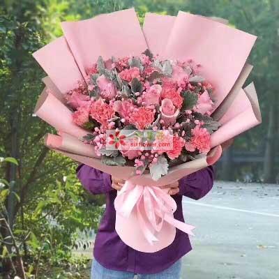 永远年轻/9支粉色康乃馨,9支粉色玫瑰天津永丰鲜花店