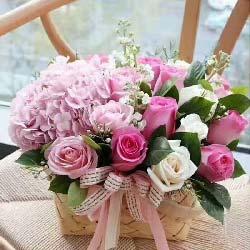 最美的祝福/20枝玫瑰