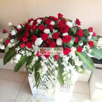 40支红色玫瑰/演讲台花4果然有花