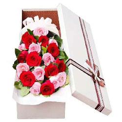 爱你久久/20枝玫瑰礼盒