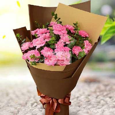 18朵粉色康乃馨,人生的意义沁香花艺