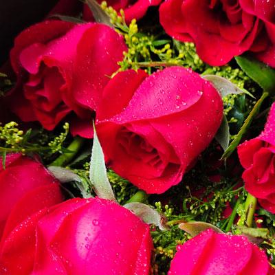阎良区蔷薇花艺33朵红玫瑰,圆形花桶装,无私的爱