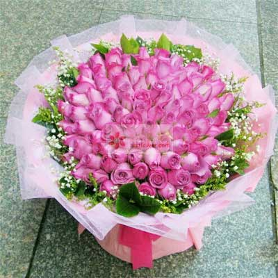 40朵紫玫瑰,恋上你了广州1号花店