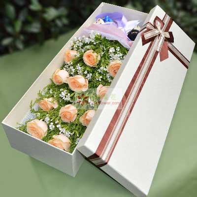 11朵香槟玫瑰,礼盒装,我的世界只有你懂惠州千彩花店