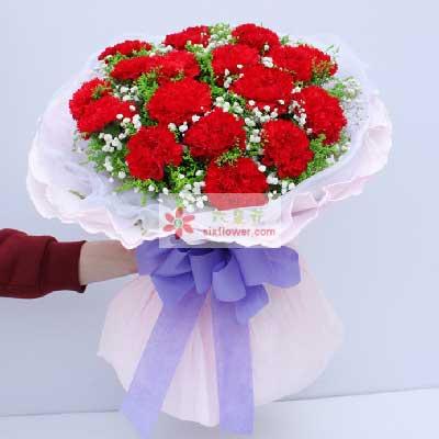 16朵红色康乃馨,最爱母亲阎良区蔷薇花艺