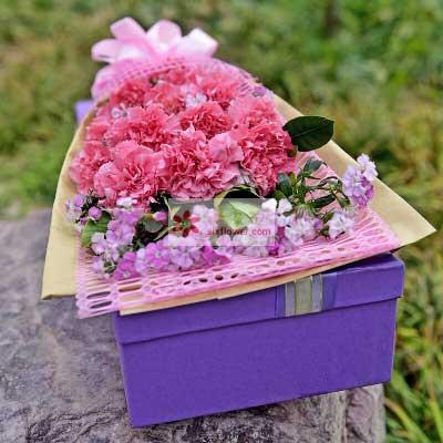 12朵粉色康乃馨,礼盒装,潇洒度时光Mico米可花艺
