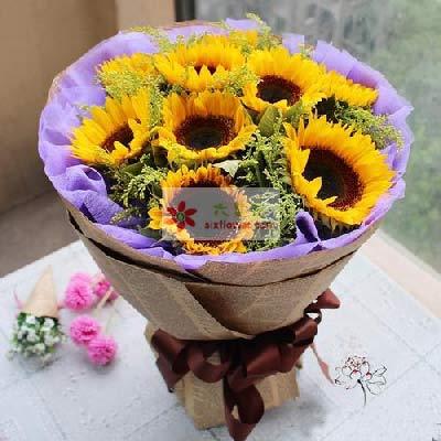 11朵向日葵,快乐的心舟A牛歌花艺