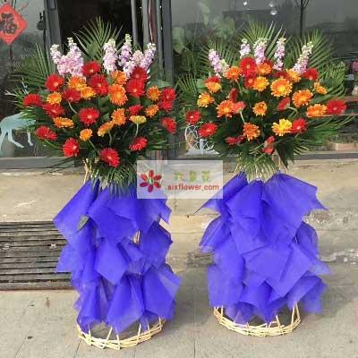 最诚挚的祝愿/单层花篮上海兰兰花店