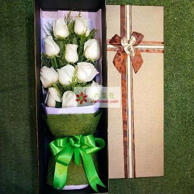 大连香朵花艺此情不渝/11支白色玫瑰礼盒