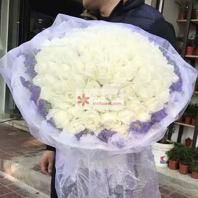 天津百合塘沽店是否愿意做我的另一伴/99支白色玫瑰